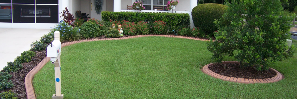 Your lawn the way  you've always wanted it to look.