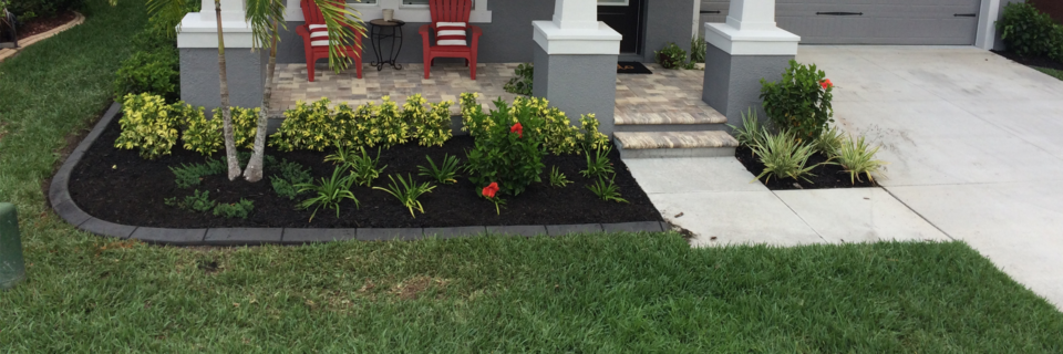 Enhance your landscape