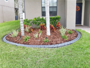 Gorgeous new lawn and custom landscape curb