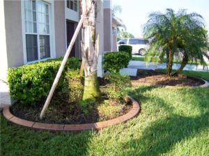 Custom Landscape and curbing finished by Curb Appeal Curbing