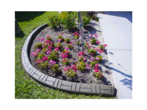 New Landscape curb